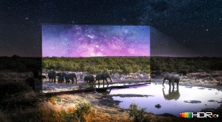 giant Samsung TV pictured out in nature, with elephants walking out of screen