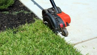 Best lawn edgers 2021: Gas and electric lawn edgers to perfect your garden