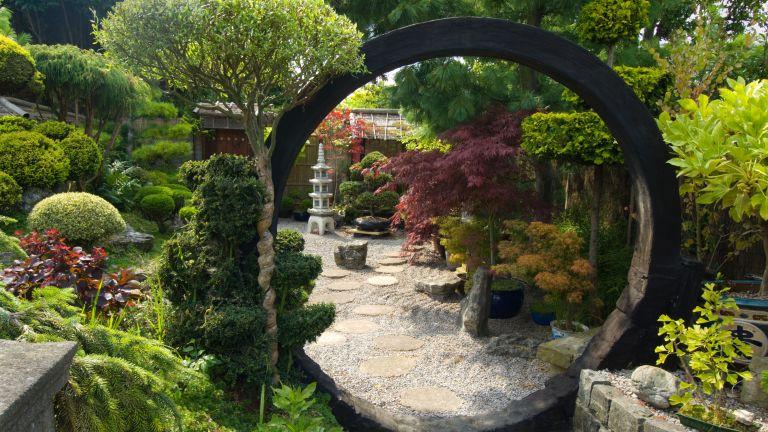 Japanese garden ideas: Japanese style garden with moon gate, rocks, shrubs and trees