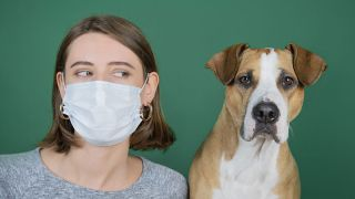 Can dogs get Covid-19 - Woman in mask looking suspiciously at dog