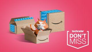Spare jetzt bei den Amazon September Angeboten