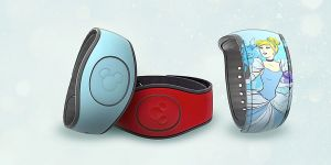 Walt Disney World Just Put Another Nail In The Coffin Of MagicBands