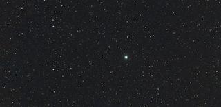 Nova Centauri 2013, new stars, old stars