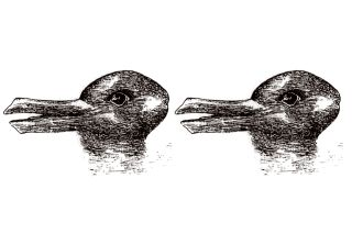 What do you see when you look at this image, by artist Joseph Jastrow, published in 1899 in Popular Science Monthly?