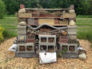 "University of New Hampshire's ""Bee Hotel"""