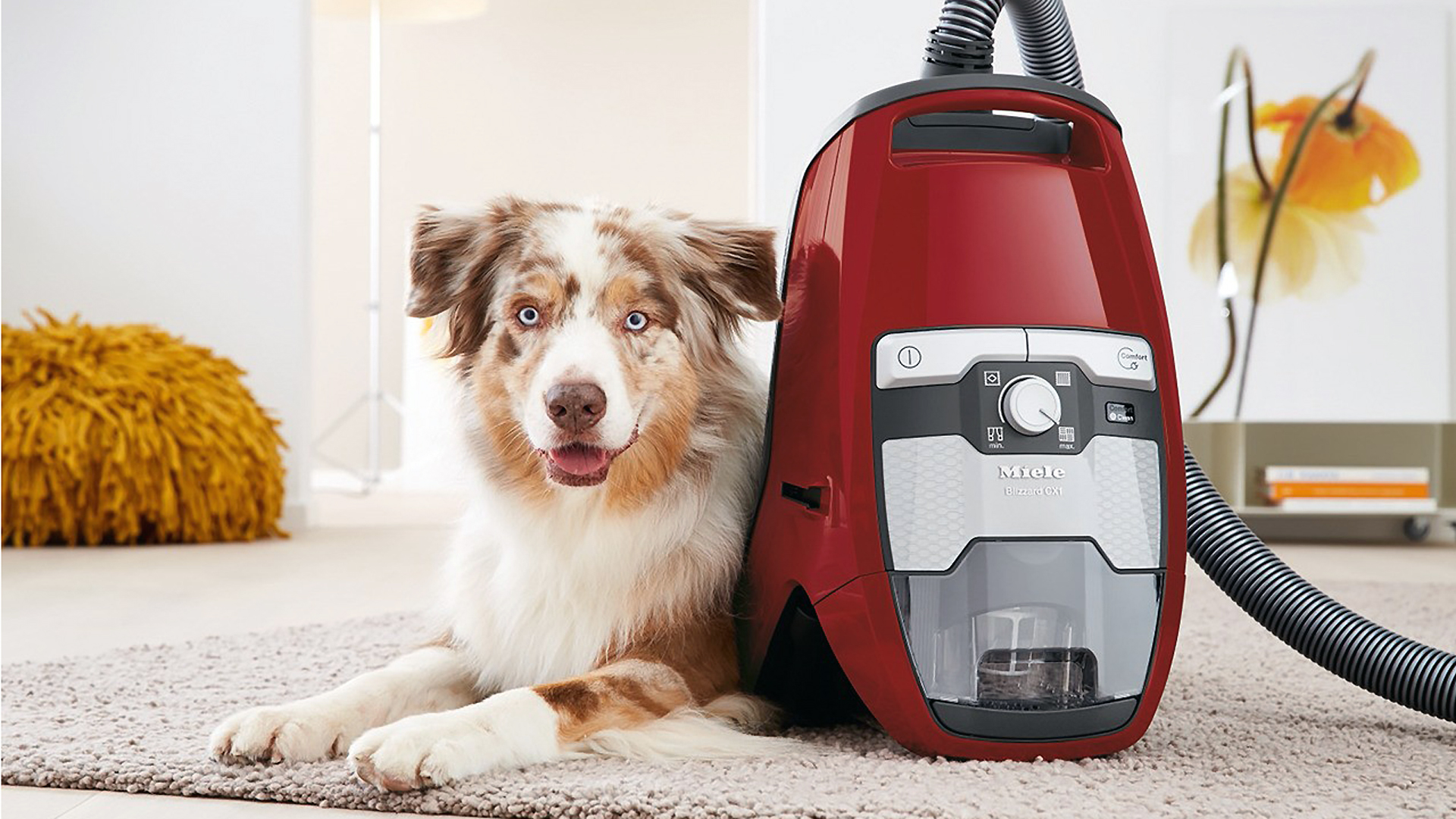 Best vacuum cleaner 2019: bagless and bagged, cordless and