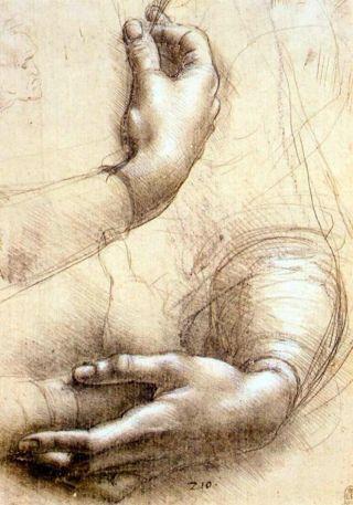 """""""Study of Arms and Hands"""" by Leonardo da Vinci, 1474."""