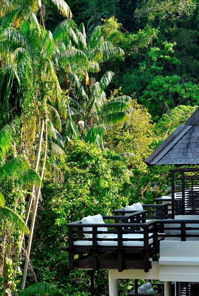 Borneo featured image