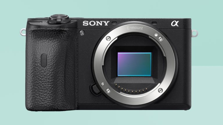 Sony A6600 review