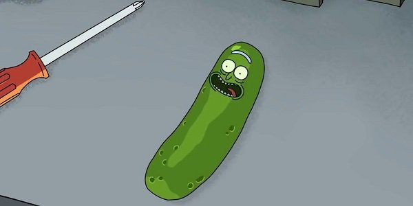 Pickle Rick Rick And Morty Adult Swim