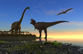 An illustration of dinosaurs and a pterodactyl overhead.