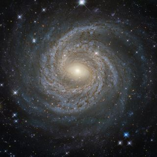 The Spiral Galaxy NGC 6814