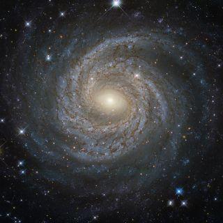 The Spiral Galaxy NGC 6814