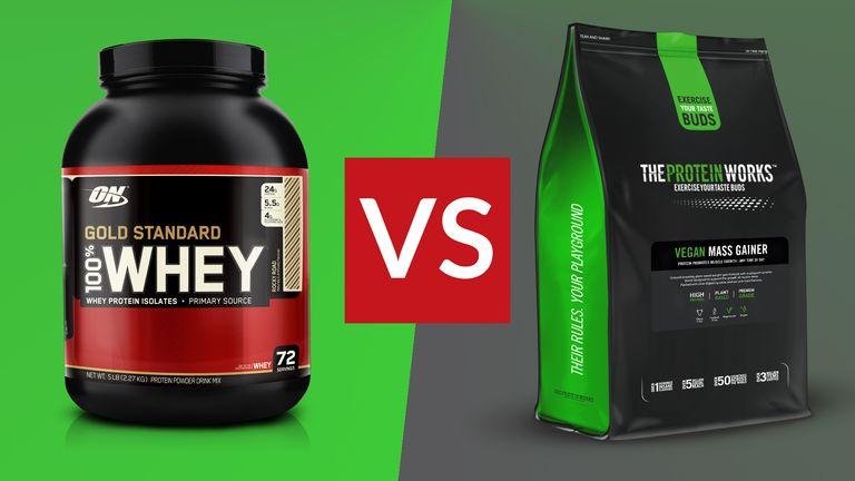 mass gainer vs protein powder