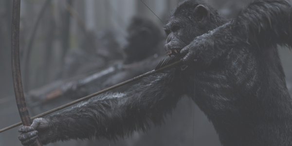 War for the Planet of the Apes archer apes take aim