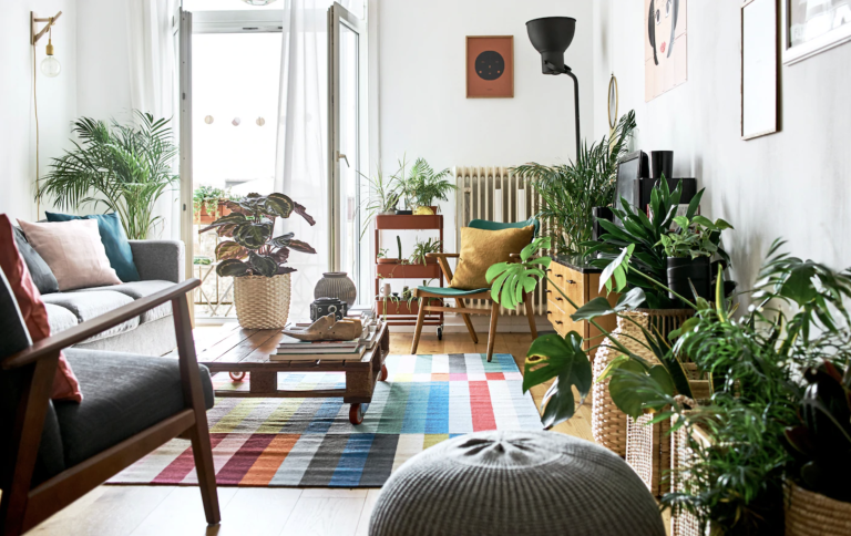 Small apartment living room ideas with house plants
