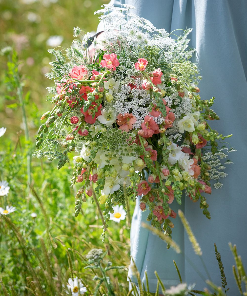 Gardener and author Sarah Raven shares her tips on how to care for Snapdragons