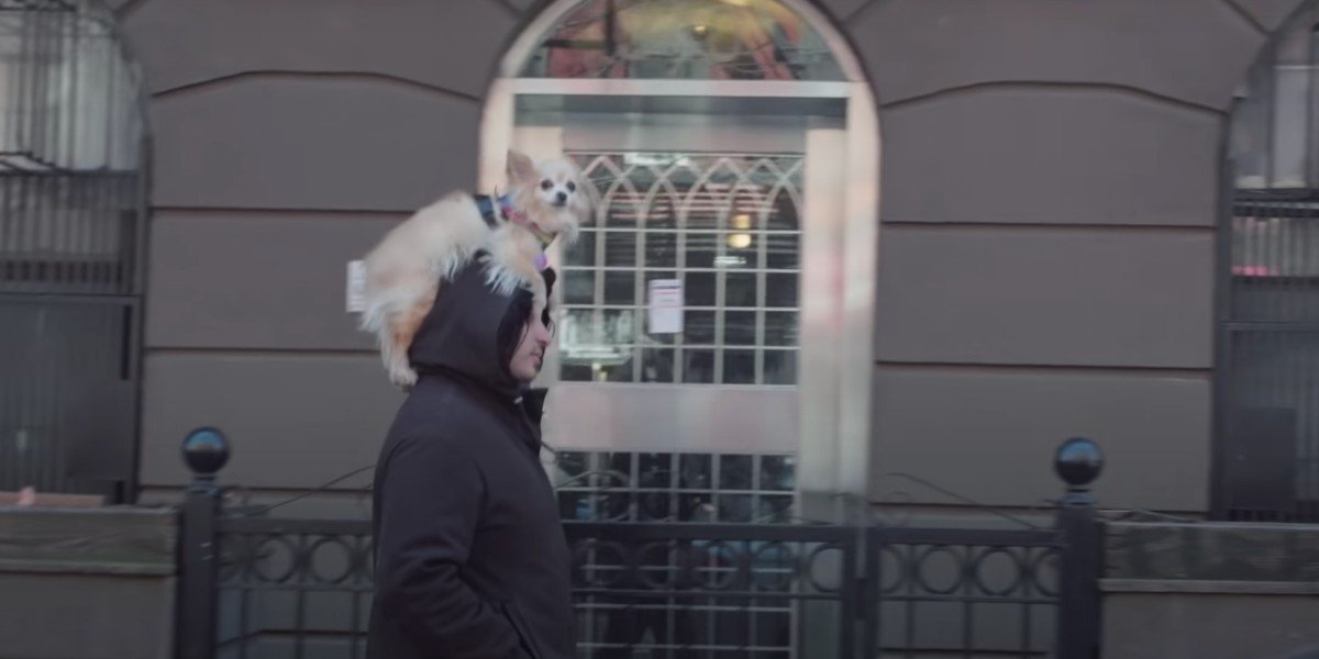 Dog Hat Man in How to with John Wilson (HBO)