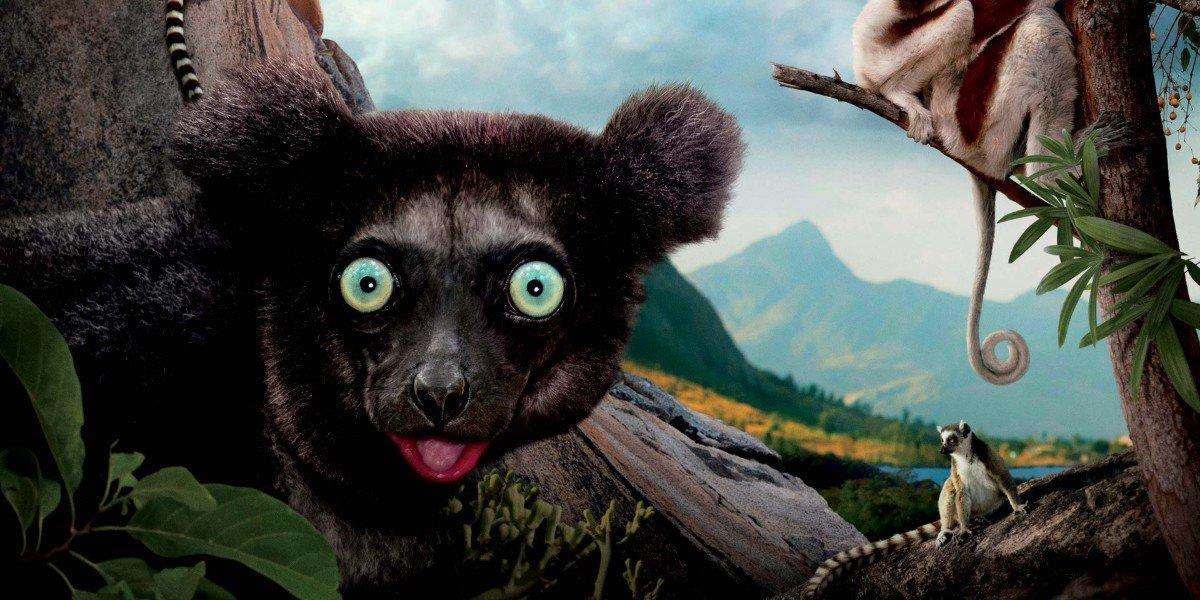 Island of Lemurs: Madagascar Poster