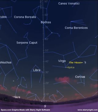 See Spica: A Sign of Summer