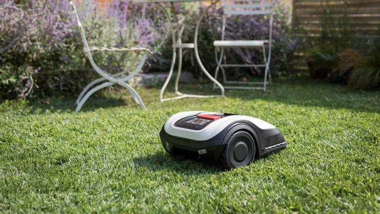 Honda Miimo HRM 40 Live lawn mower review