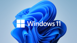Windows 11 logo in front of the new wallpaper
