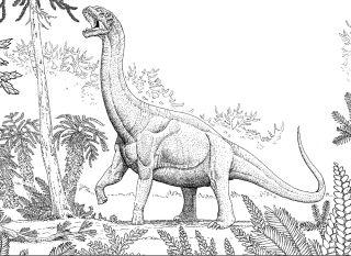 Jurassic sauropod