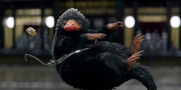 Niffler in Fantastic Beasts