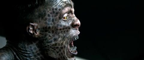 27 best OLD MOONSHINE STILLS images on Pinterest ... |Teen Wolf Lizard