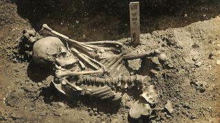 Original excavation photograph of Tsukumo No. 24.