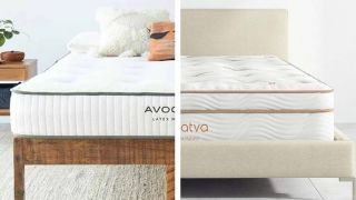 Saatva vs Avocado: image shows the Avocado Latex mattress on one side and the Saatva Latex Hybrid on the other