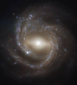NGC 7773, imaged by the Hubble Space Telescope's Wide Field Camera 3, is a barred spiral galaxy — like the Milky Way. Older spiral galaxies are more likely to have the bar across their center that's pictured here, suggesting bars indicate a galaxy's maturity.