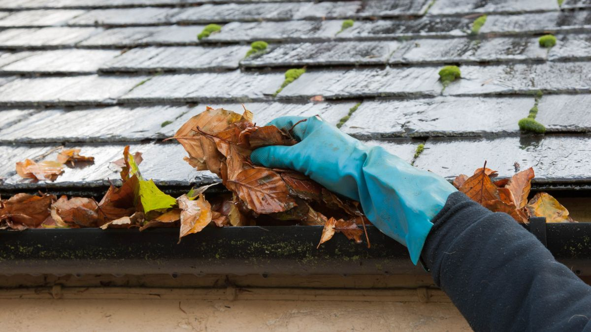 12 tips to get your home ready for fall