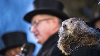 Punxsutawney Phil is held by the handler as the prediction for six more weeks of winter is read during Groundhog day ceremonies on February 2, 2018 in Punxsutawney, Pennsylvania.