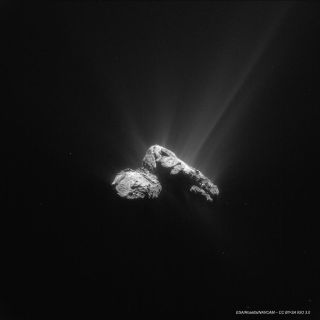 The Comet 67P/Churyumov–Gerasimenko as seen by the European Space Agency's Rosetta spacecraft on July 30, 2015. The comet made its closest approach to the sun, called perihelion, on Aug. 13.