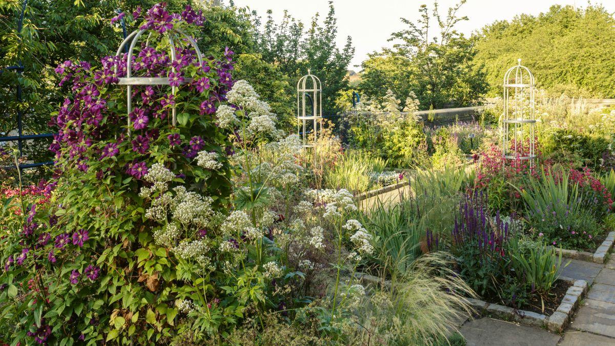 Follow Shawna Coronado's tips for creating a wellness garden – a backyard transformation good for body and soul