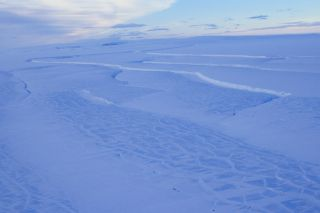 Rifts in the Scar Inlet Ice Shelf