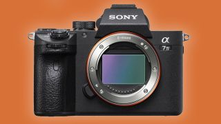 Sony A7 IV specs leak: $2,499, 30MP and 4K 60p with no overheating