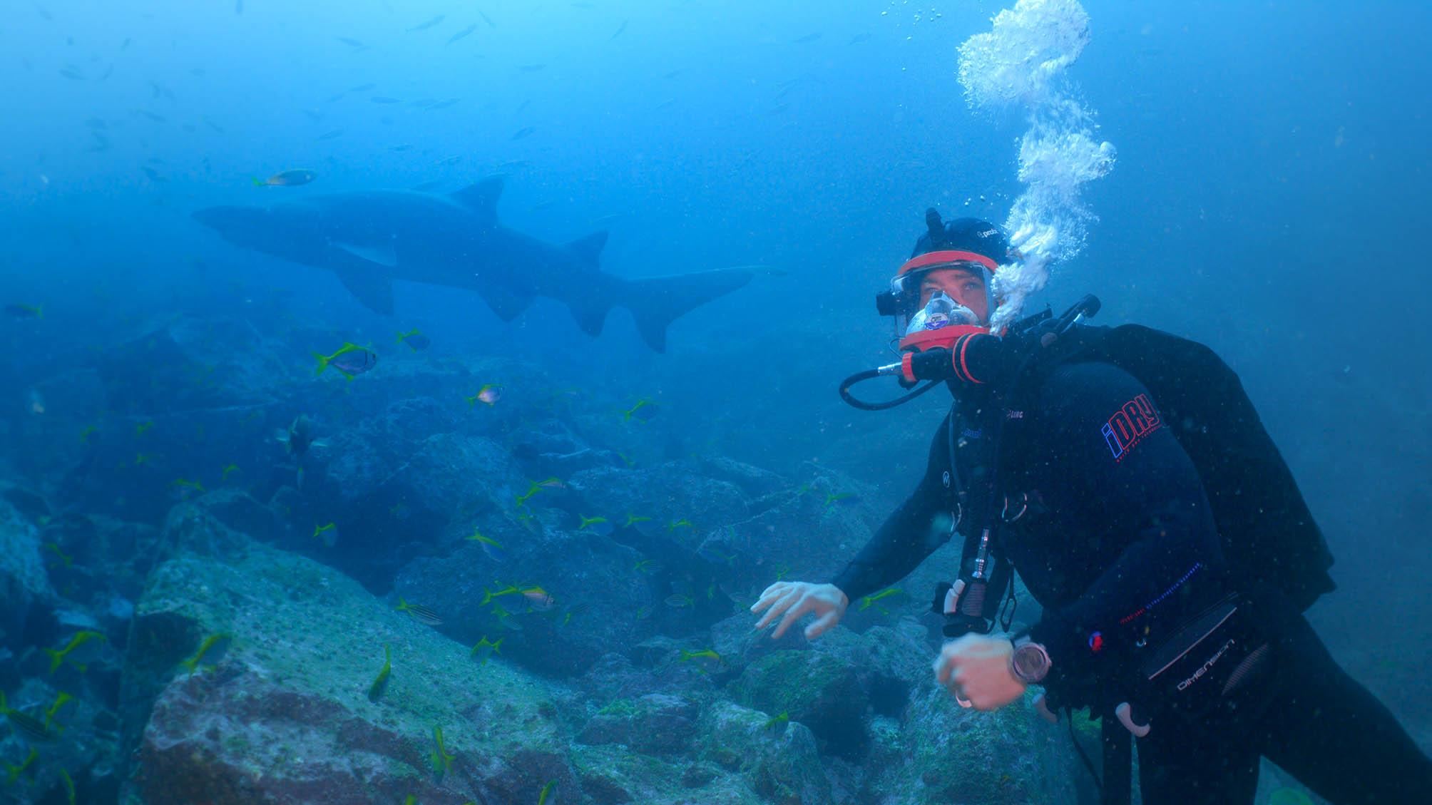 Chris Hemsworth se sumerge con un tiburón nodriza gris de 12 pies.