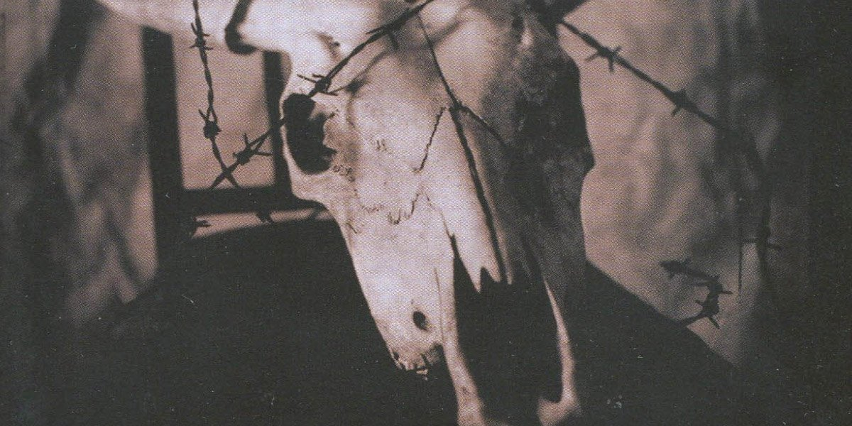 Rose Madder book cover