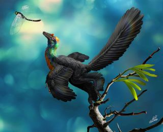 Rainbow dinosaur illustration