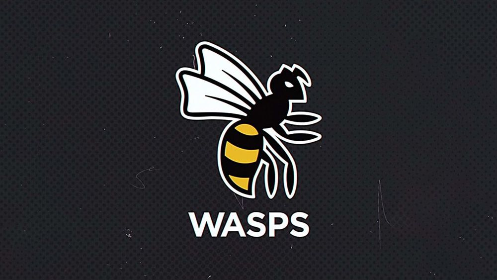 New Wasps rugby logo gets a stinging response from fans