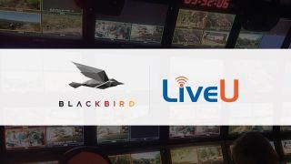 Blackbird LiveU