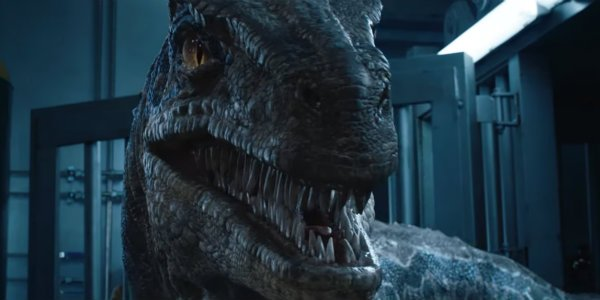 Jurassic World: Fallen Kingdom raptor