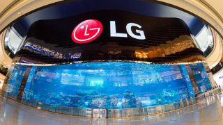 LG Display's Q3 Report: OLED Lights the Way Forward