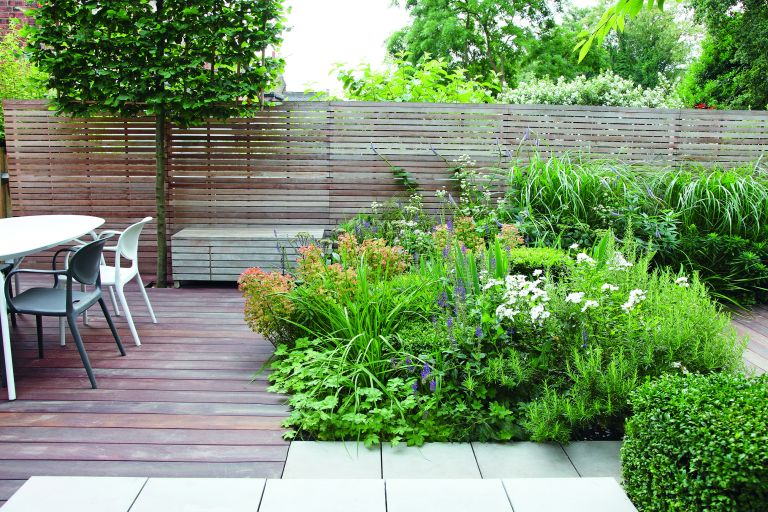 Patio planting ideas