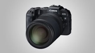 Canon EOS RP with the RF 24-240mm F4-6.3 IS USM