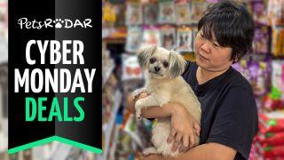 cyber monday pet deals