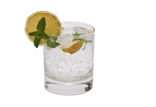 A gin and tonic, with lemon