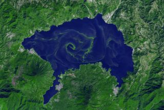 A large bloom of cyanobacteria spread across Guatemala's Lake Atitlán.